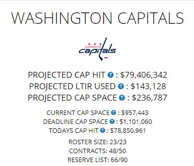 Capitals Cap 2-20-2019